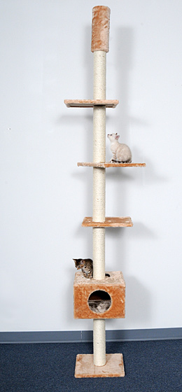 Whisker World Stairway To Heaven Cat Tree Usage
