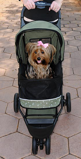 Special Edition Pet Stroller Usage