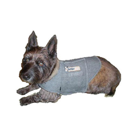 Thundershirt Usage